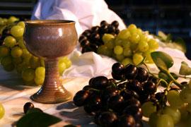 Passover-Communion 2011